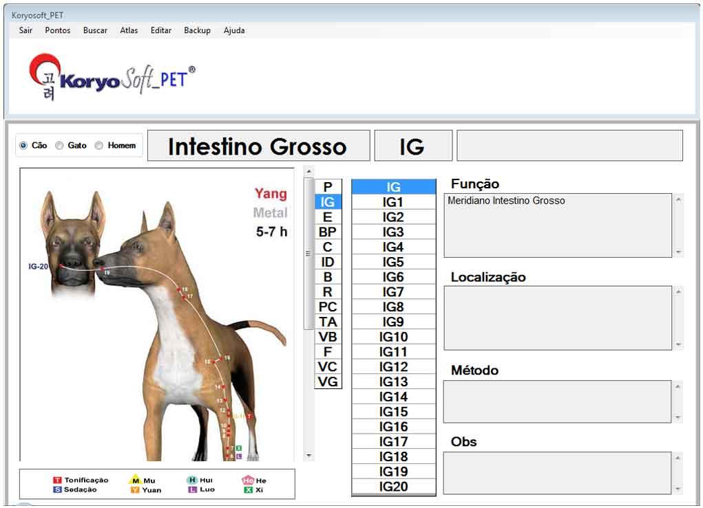 Tela principal Dog 001